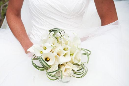 Plan a Colorado wedding