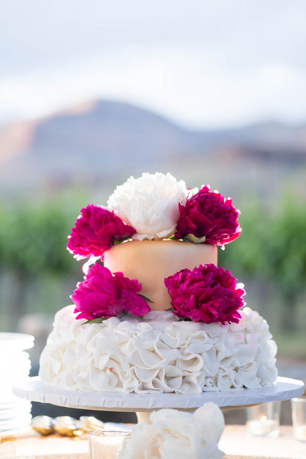 Palisade Colorado Winery Wedding